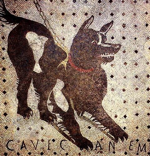 Cave Canem della Casa del Poeta Tragico a Pompei